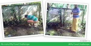 My Tree Challenge (MTC) - Arunanand T A